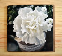 Wedding flowers photograph blank greeting card
